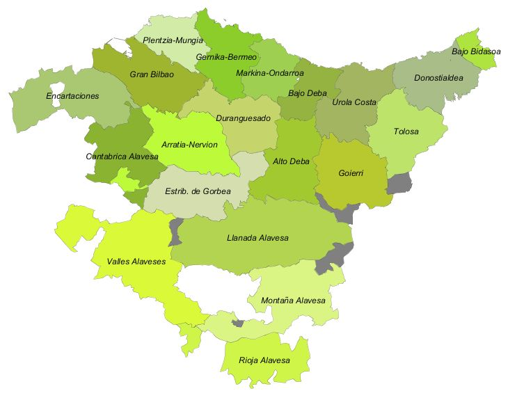 Comarcas of the Basque Country 2007