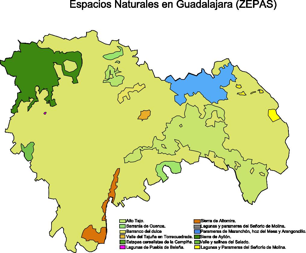 Zonas de Especial Protección para las Aves (ZEPA) en la Provincia de Guadalajara 2008