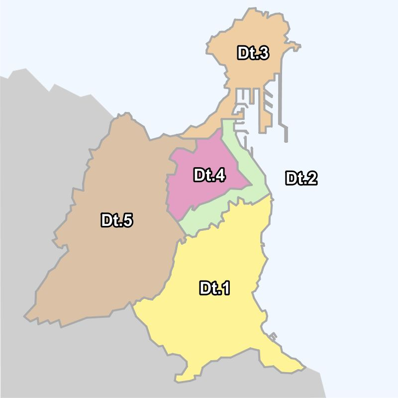 Districts of Las Palmas 2007