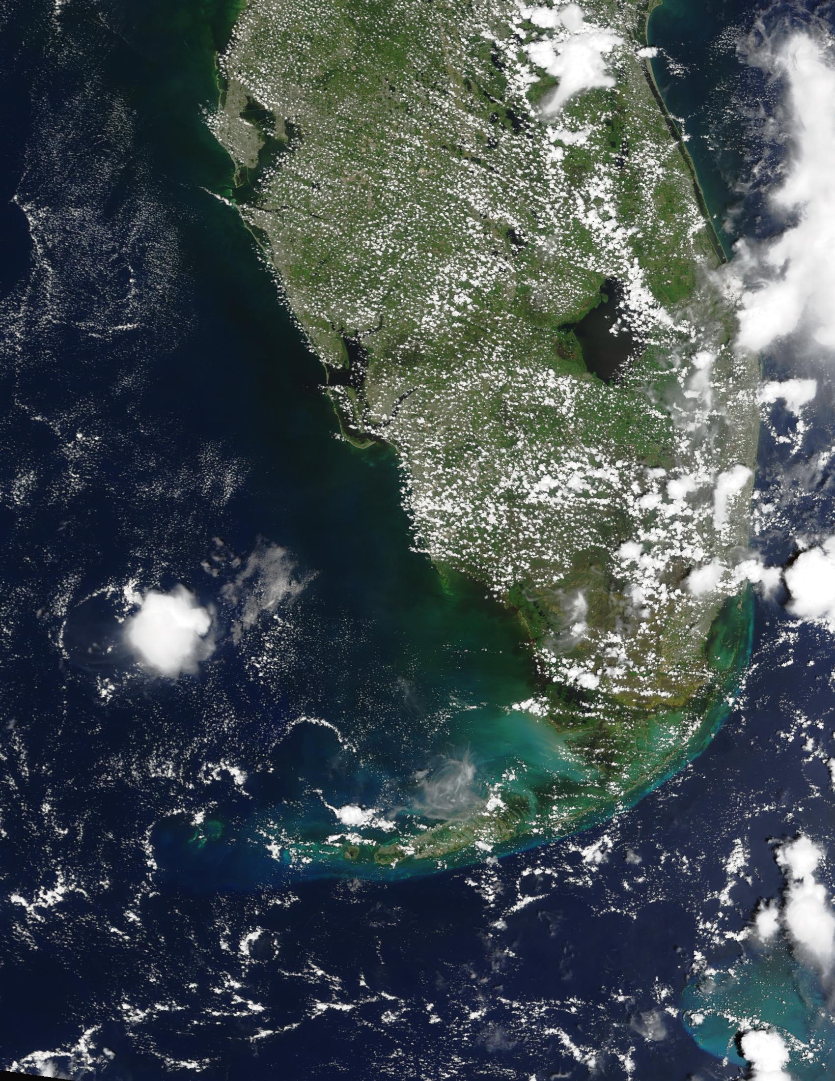 Agua negra cerca de la costa del Golfo en Florida