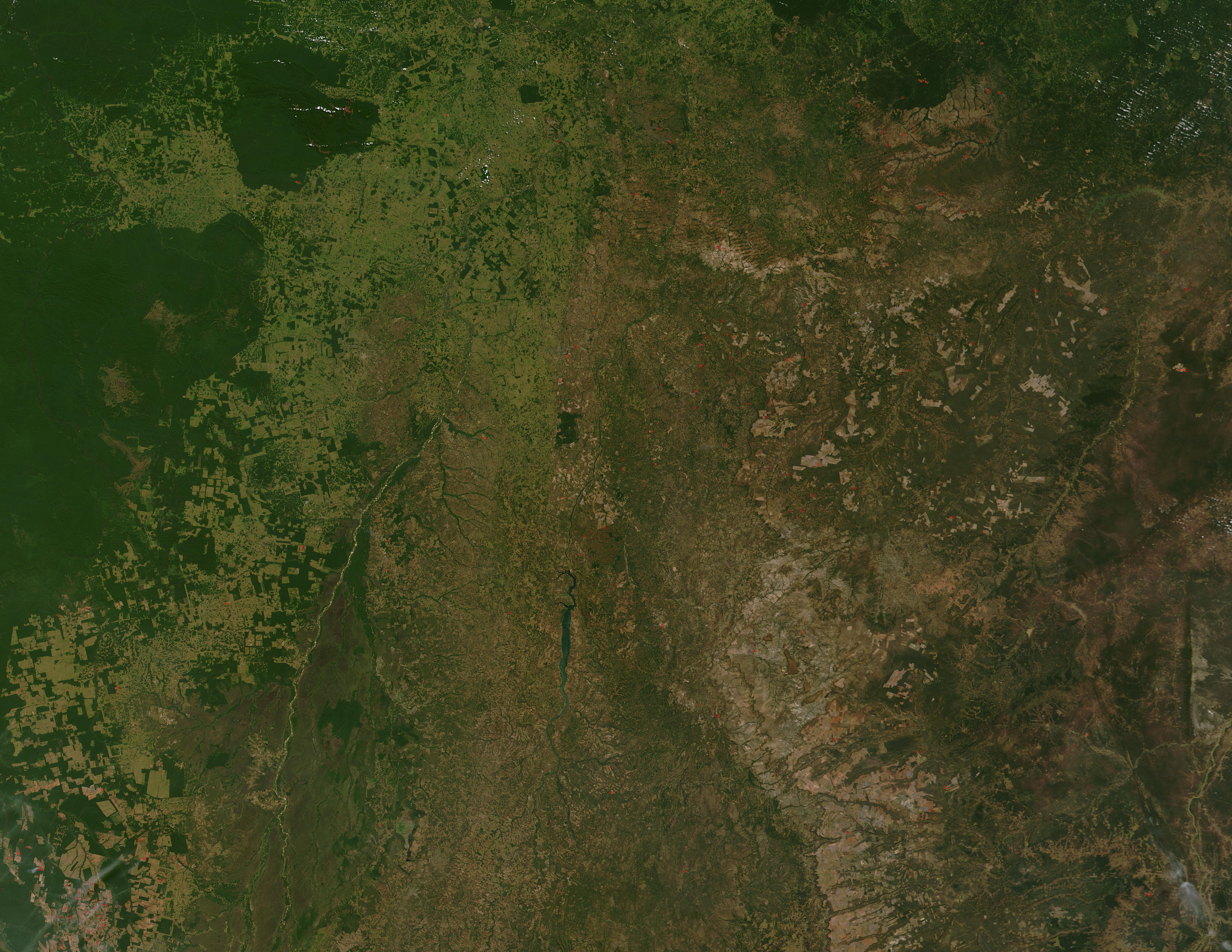 Cerrado savannas of eastern Brazil