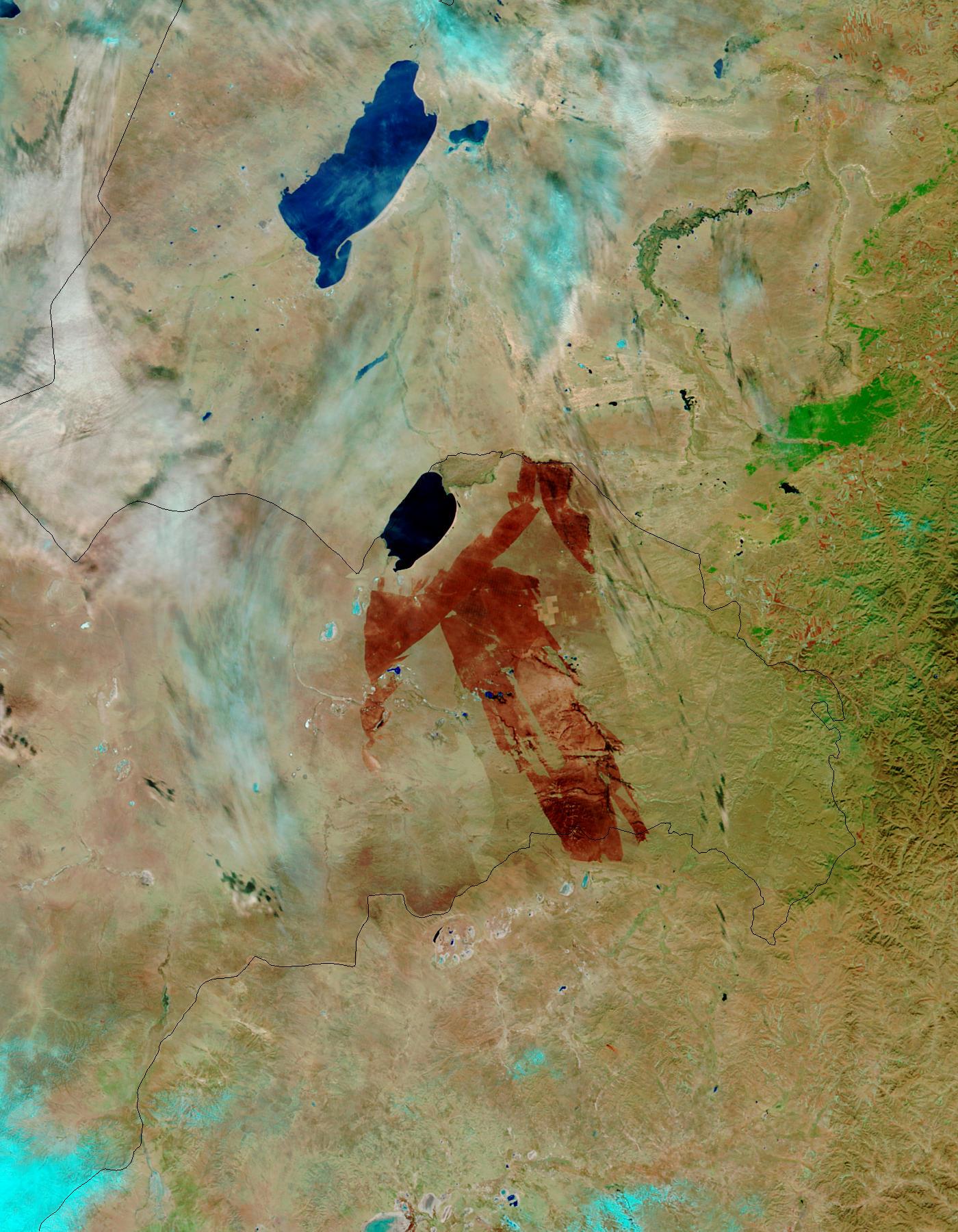 Cicatriz de fuego en Mongolia Oriental (falso color)
