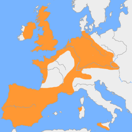 Cultura del vaso campaniforme en Europa 2200-1900 aC
