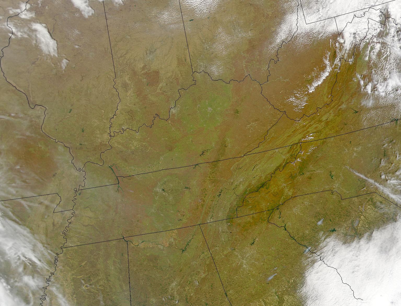 Eastern U.S. Greening