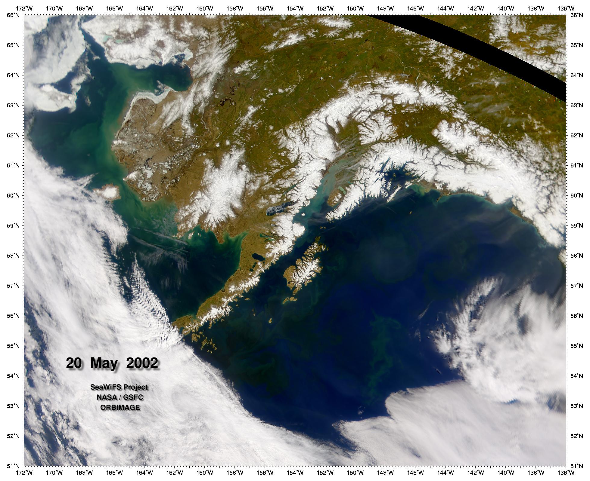 Fitoplancton en el Golfo de Alaska