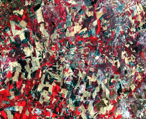 Landsat Satellite Image, Photo, Sensor Thematic Mapper, Córdoba, Spain