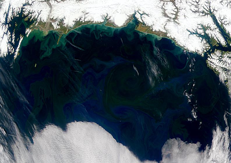 Golfo de Alaska
