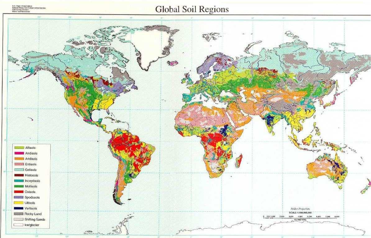 World soil regions