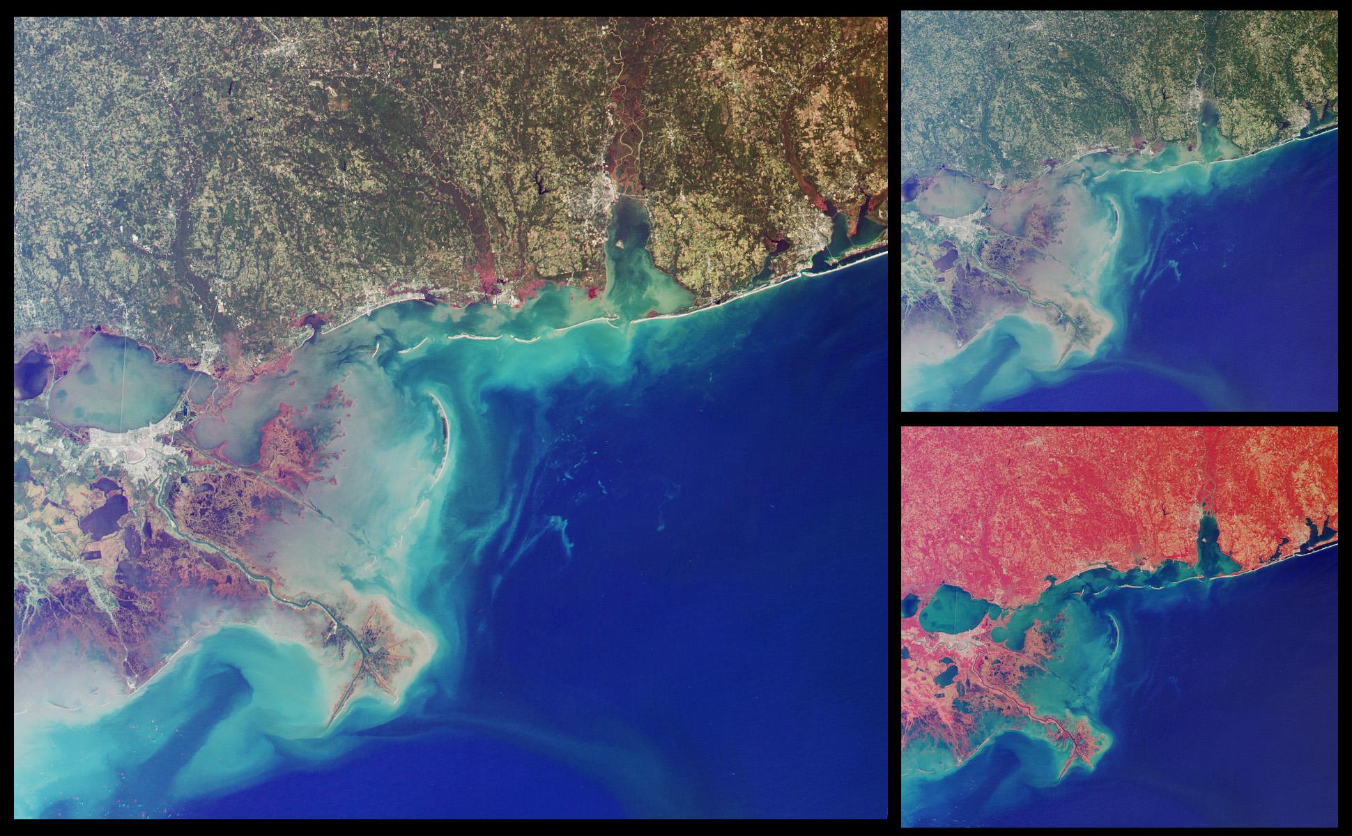 Humedales de la costa del golfo