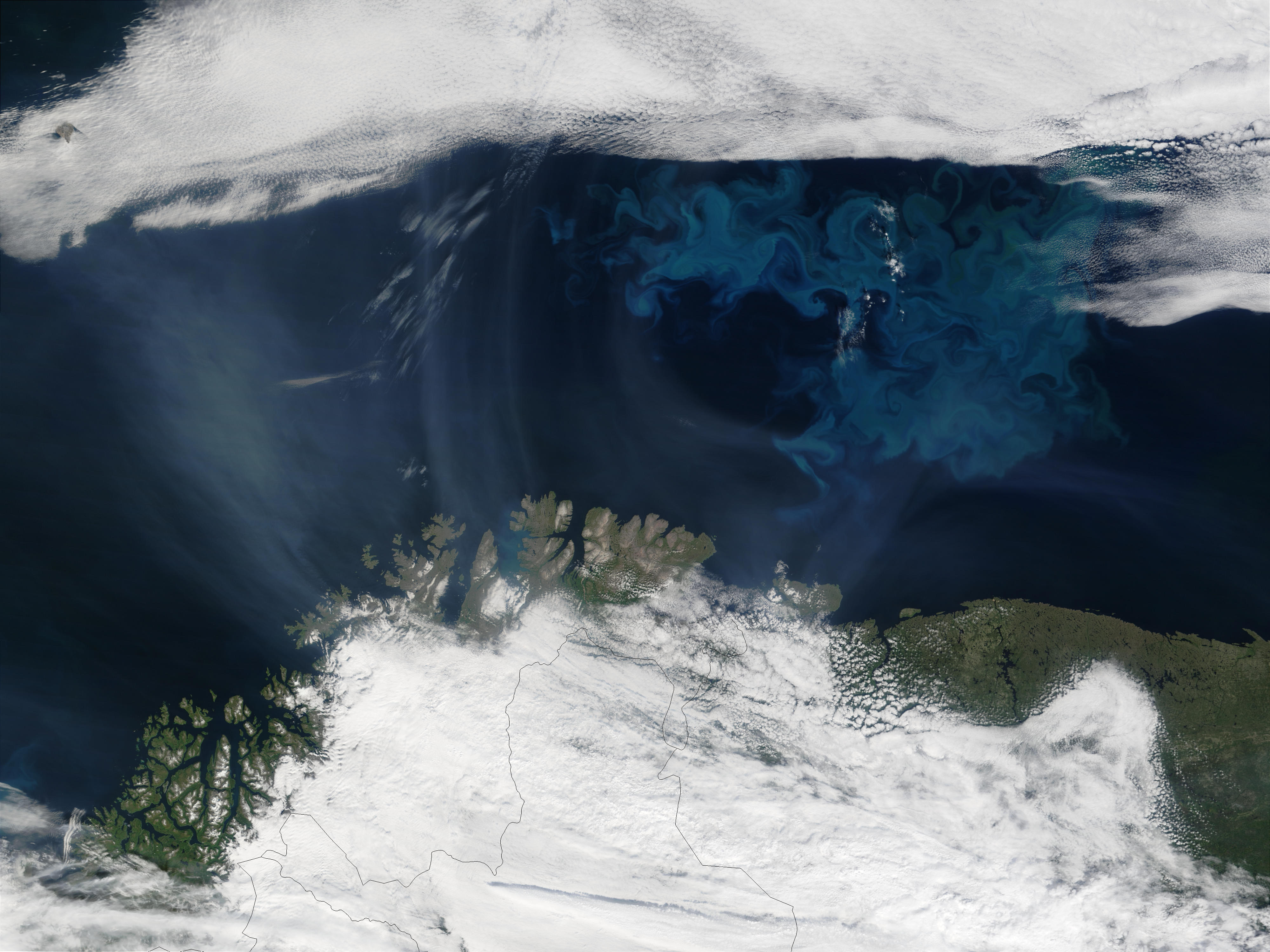 Smoke from Saskatchewan fires (Canada) and Phytoplankyon bloom off Northern Norway