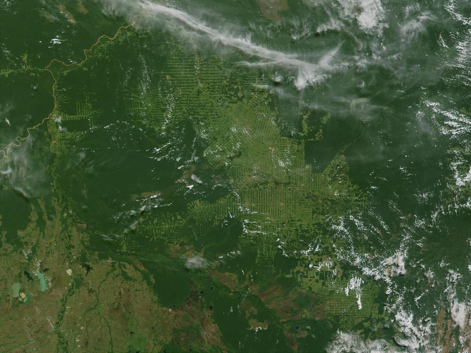 Satellite Image, Photo of Massive Deforestation, Rondonia State, Brazil