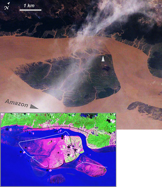 Satellite Image, Photo, Mouth of the Amazon River, Brazil