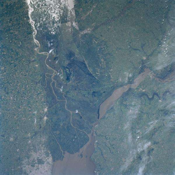 Satellite Image, Photo of Paraná River Delta, Argentina