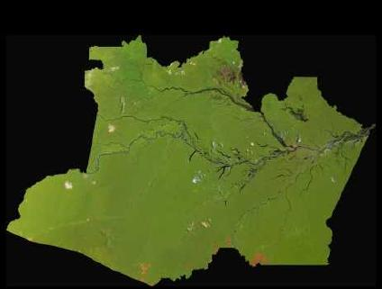 Satellite Image, Photo of Amazonas State, Brazil