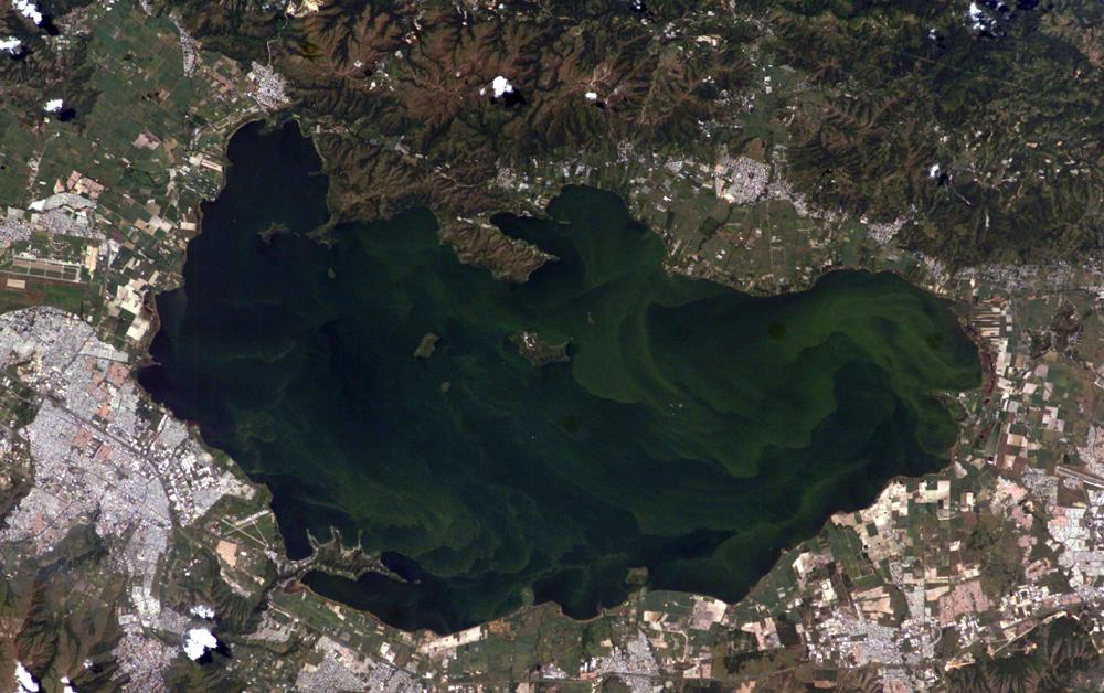 Imagen, Foto Satelite del Lago de Valencia, Venezuela