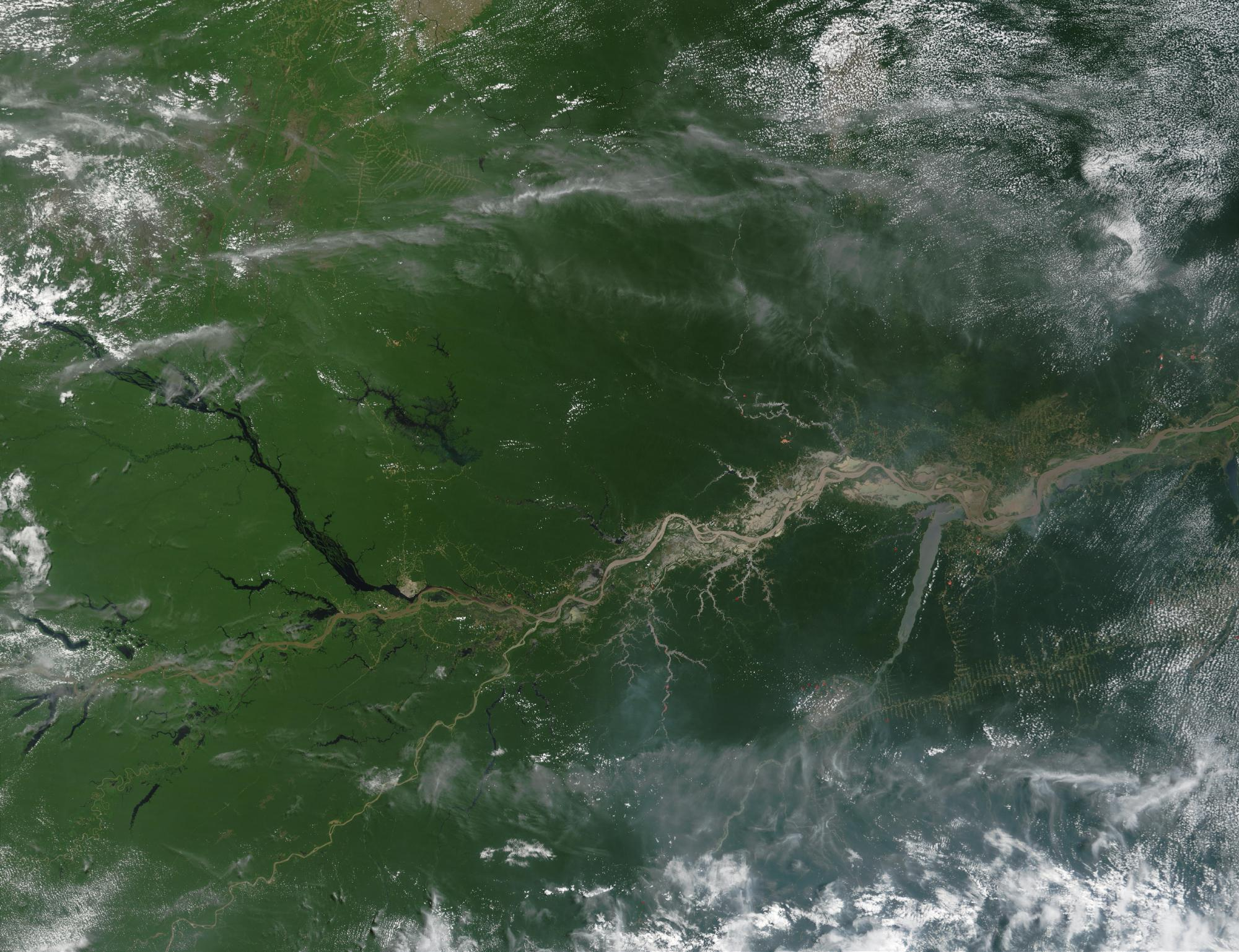 Satellite Image, Photo of the Amazon River, Brazil