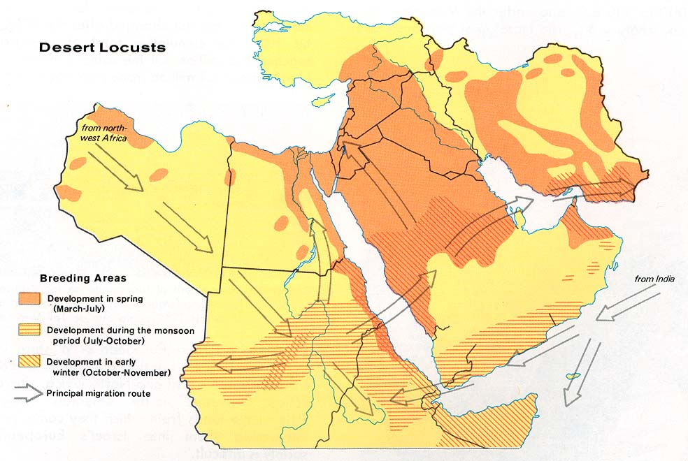 Middle East Desert Locusts 1973
