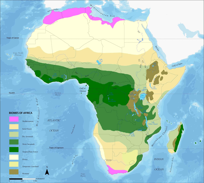 Los biomas de África