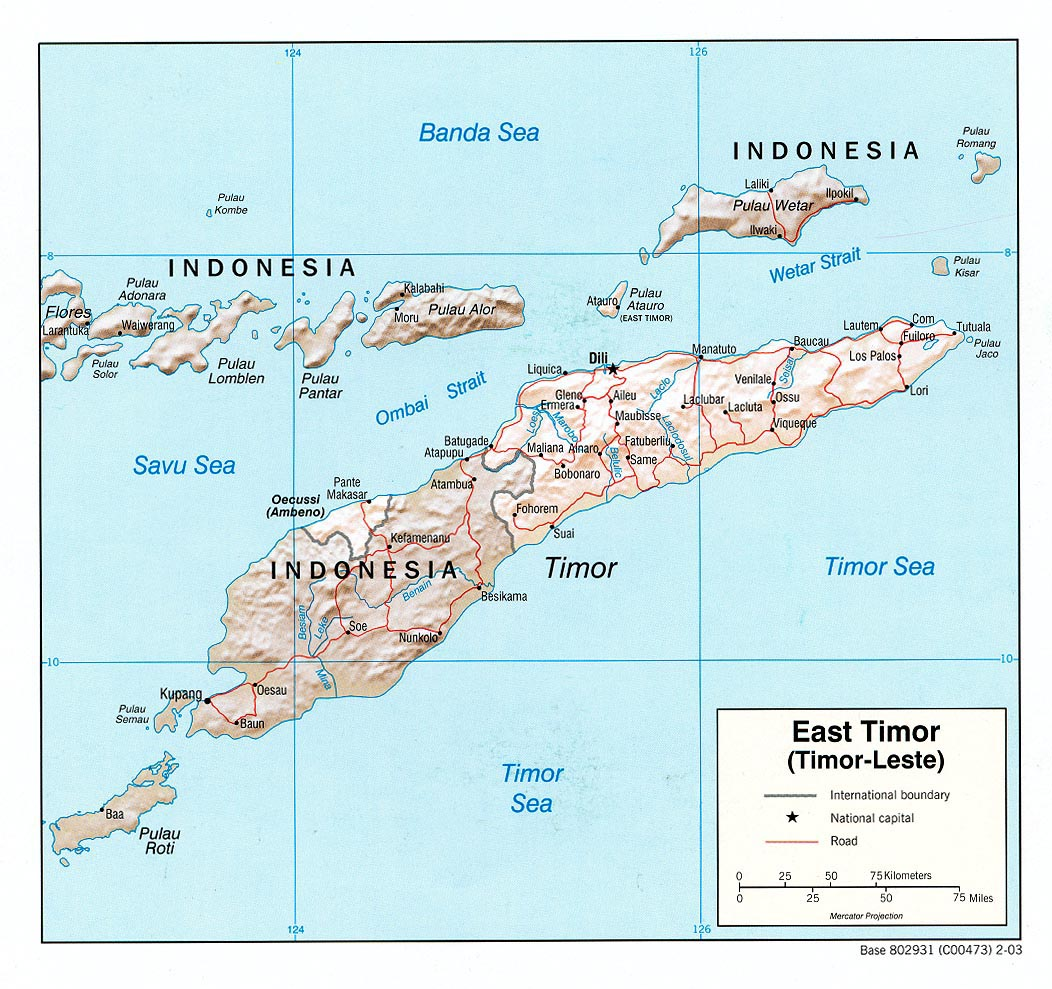 East Timor Shaded Relief Map
