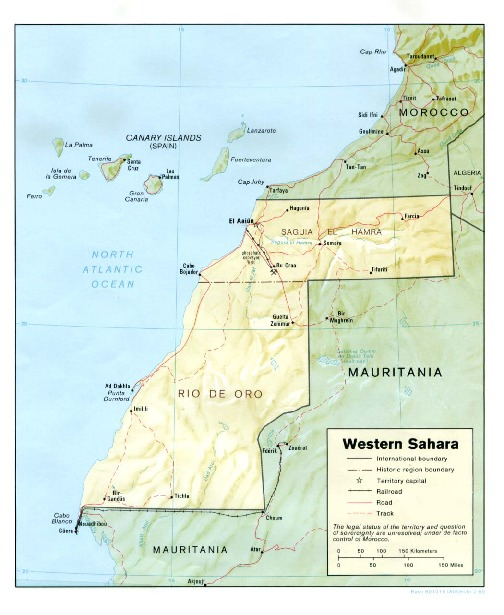 Western Sahara Shaded Relief Map