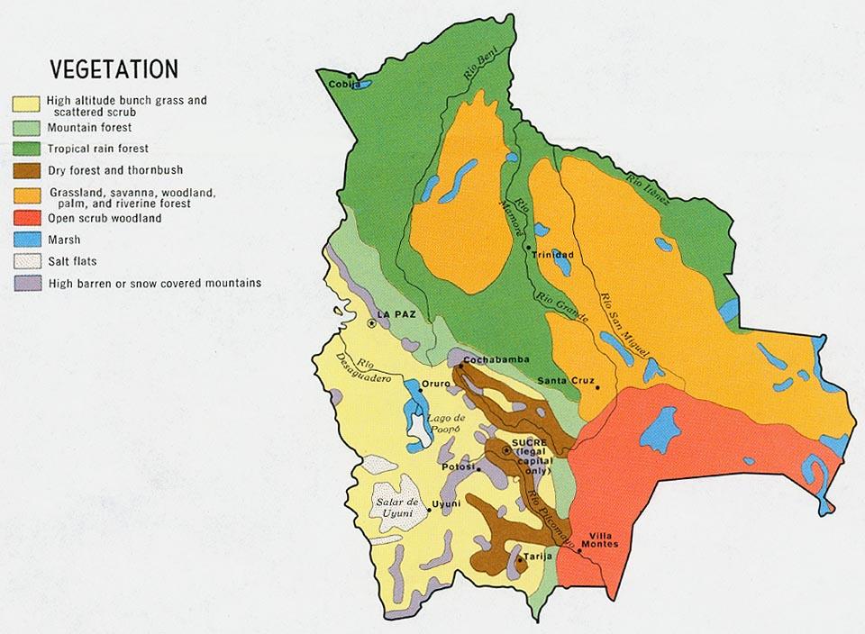 Mapa de Vegetación de Bolivia