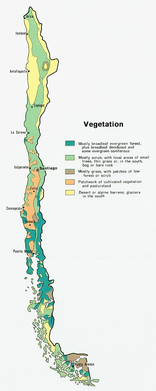 Chile Vegetation Map