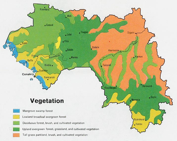 Guinea Vegetation Map