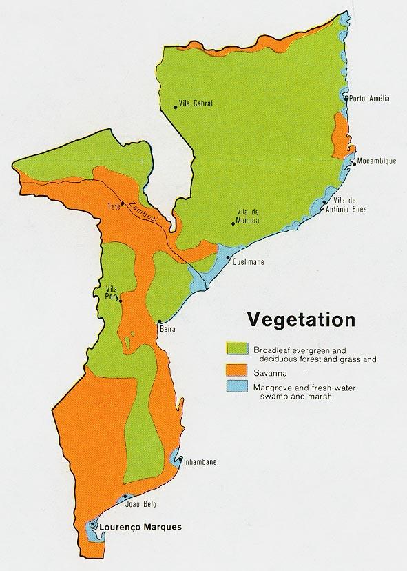 Mapa de Vegetación de Mozambique
