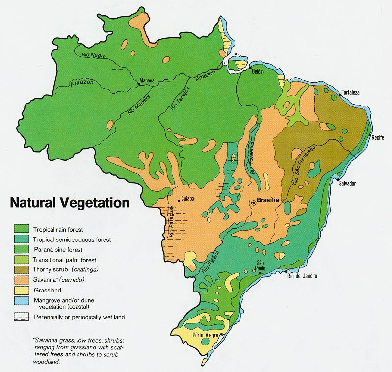 Brazil Natural Vegetation Map