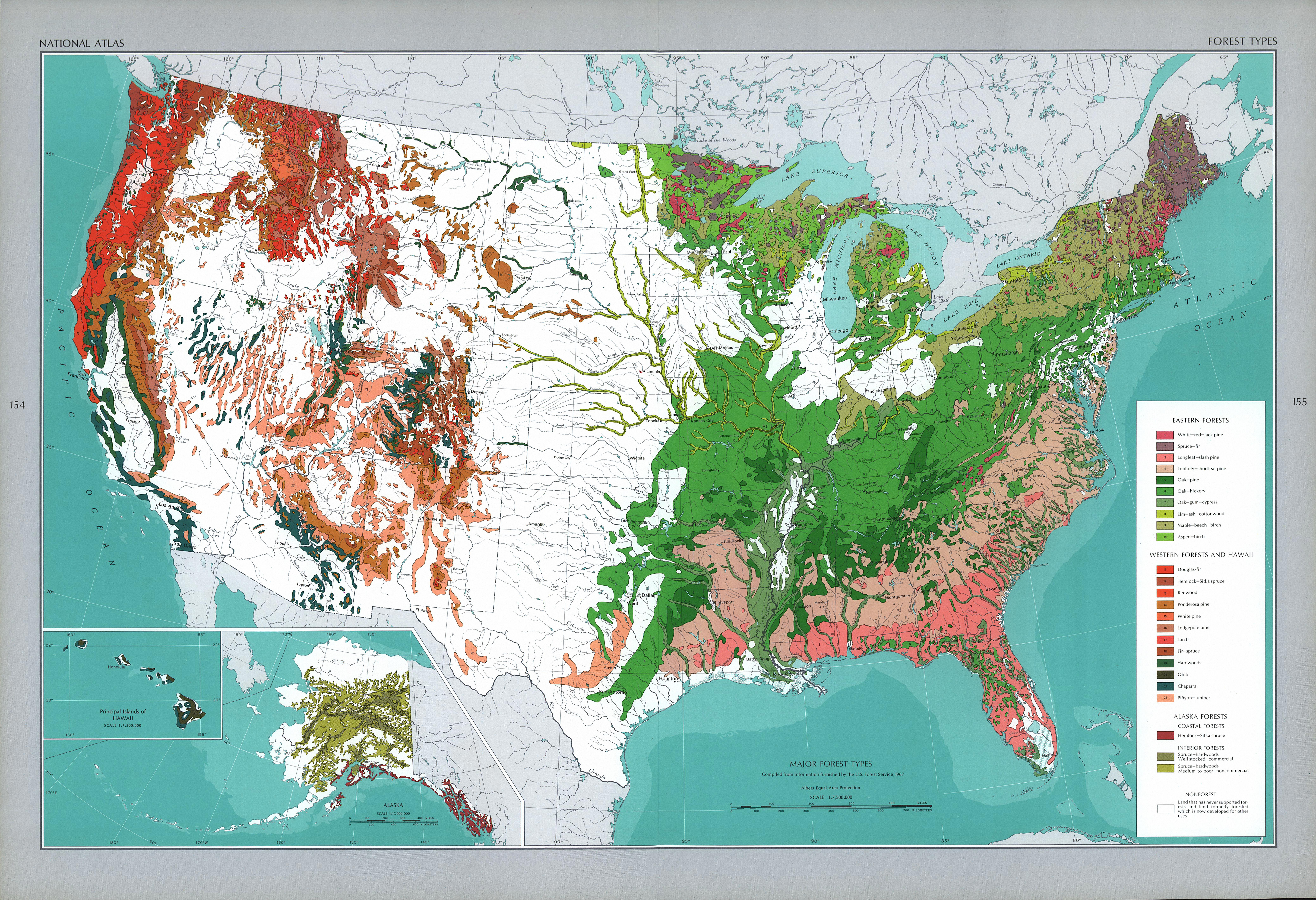 United States Forest Types Map