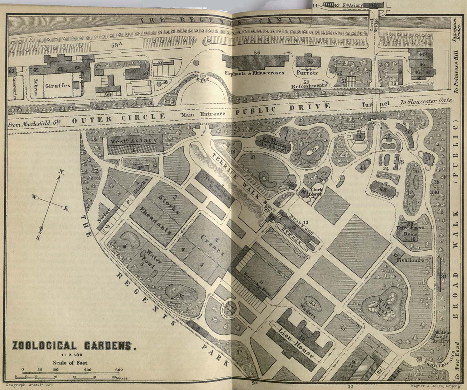 Zoological Gardens Map, London 1894