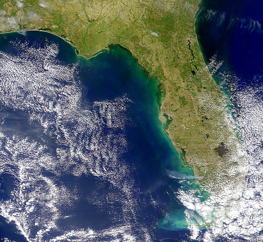 Penacho de humo de incendios en Florida