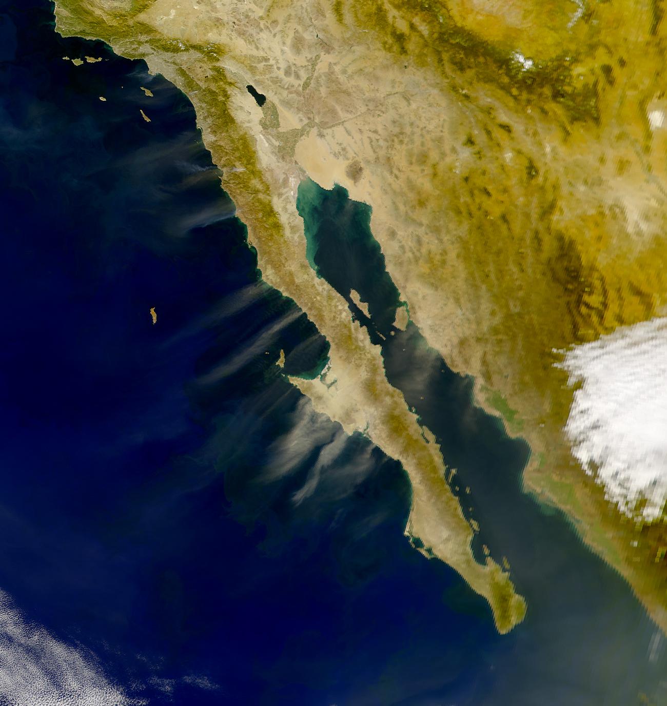 Penachos encima de Baja California, México