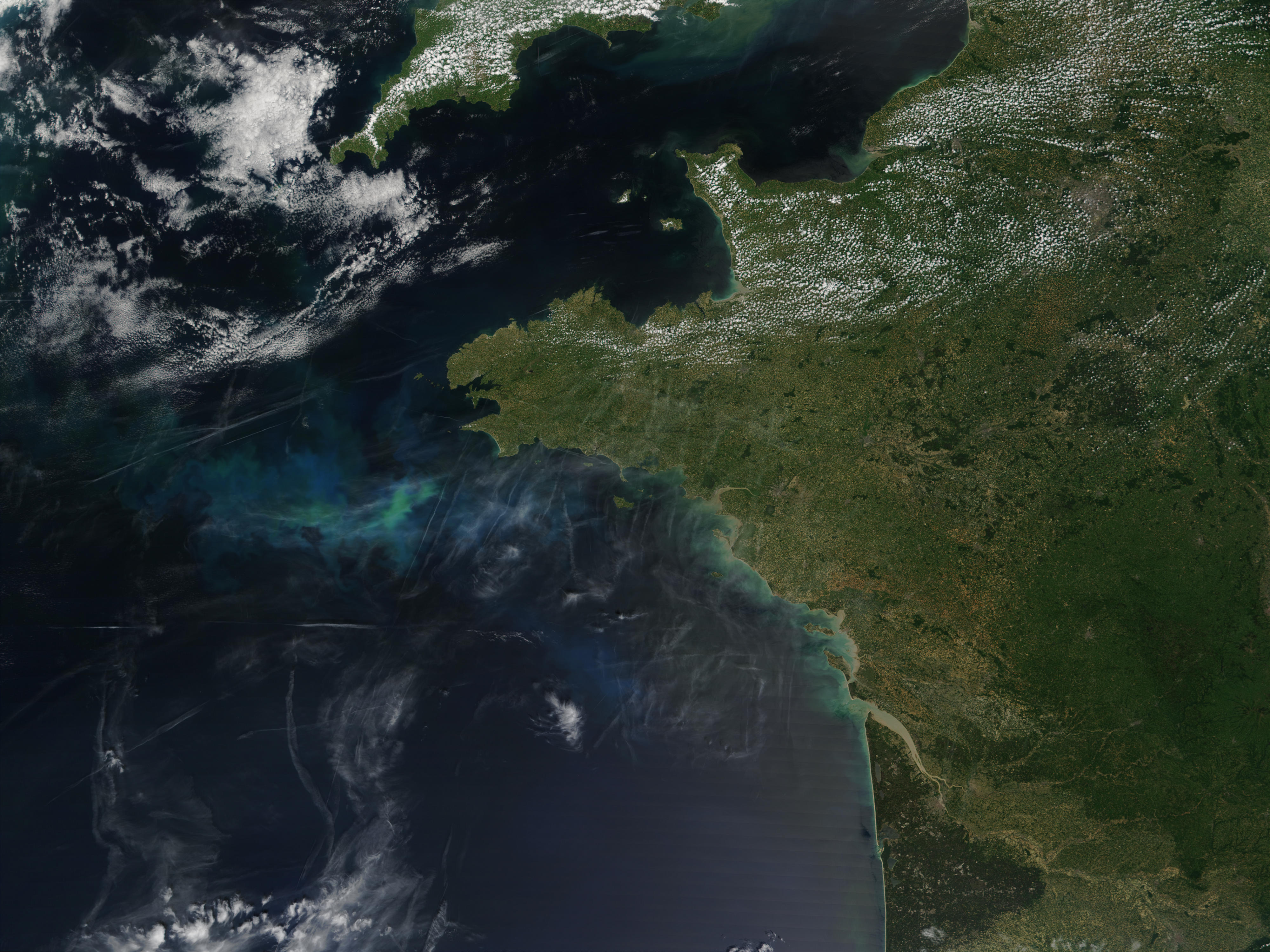Phytoplankton bloom off Brittany, France