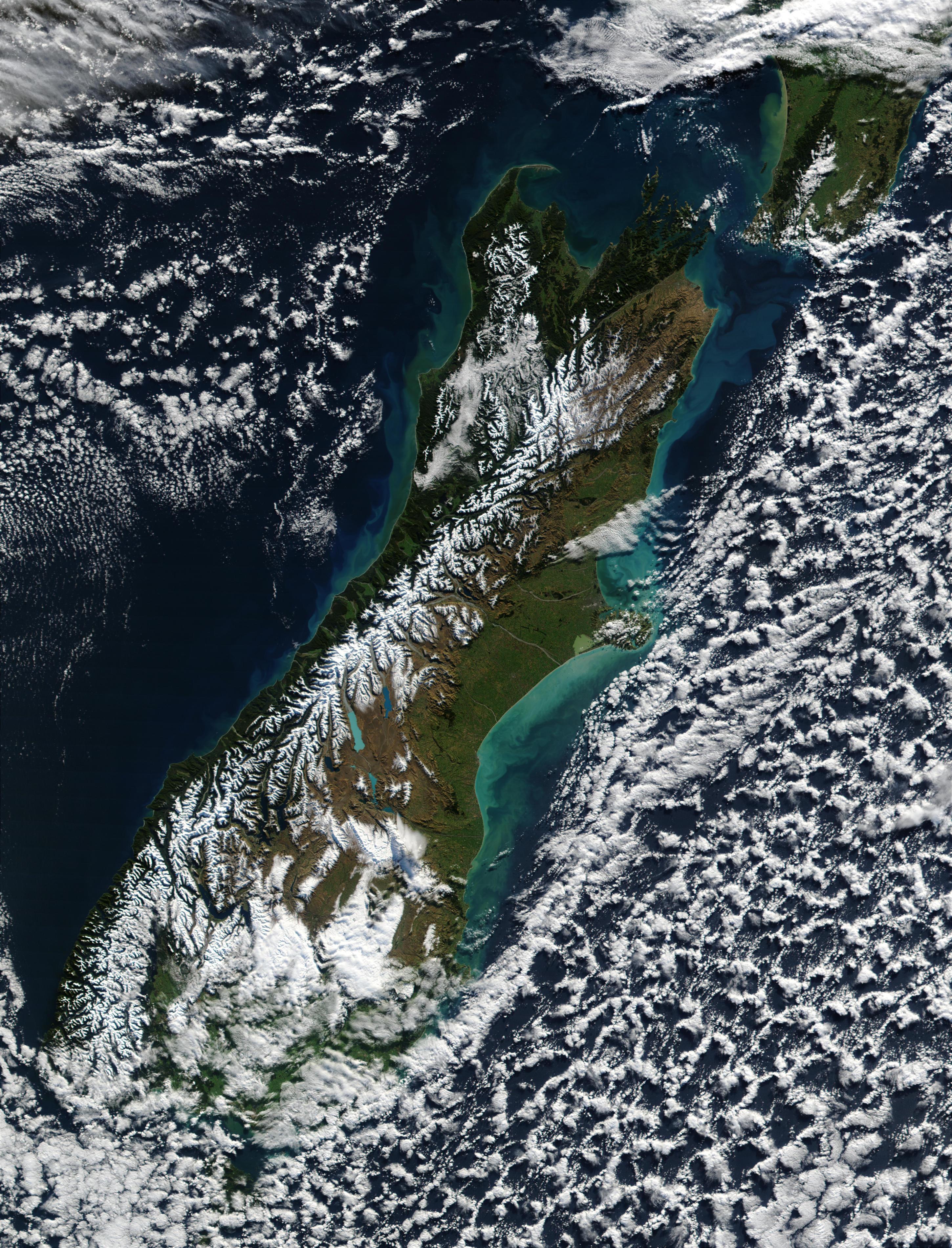 Proliferación de fitoplancton y sedimentos a lo largo de las costas de Nueva Zelanda