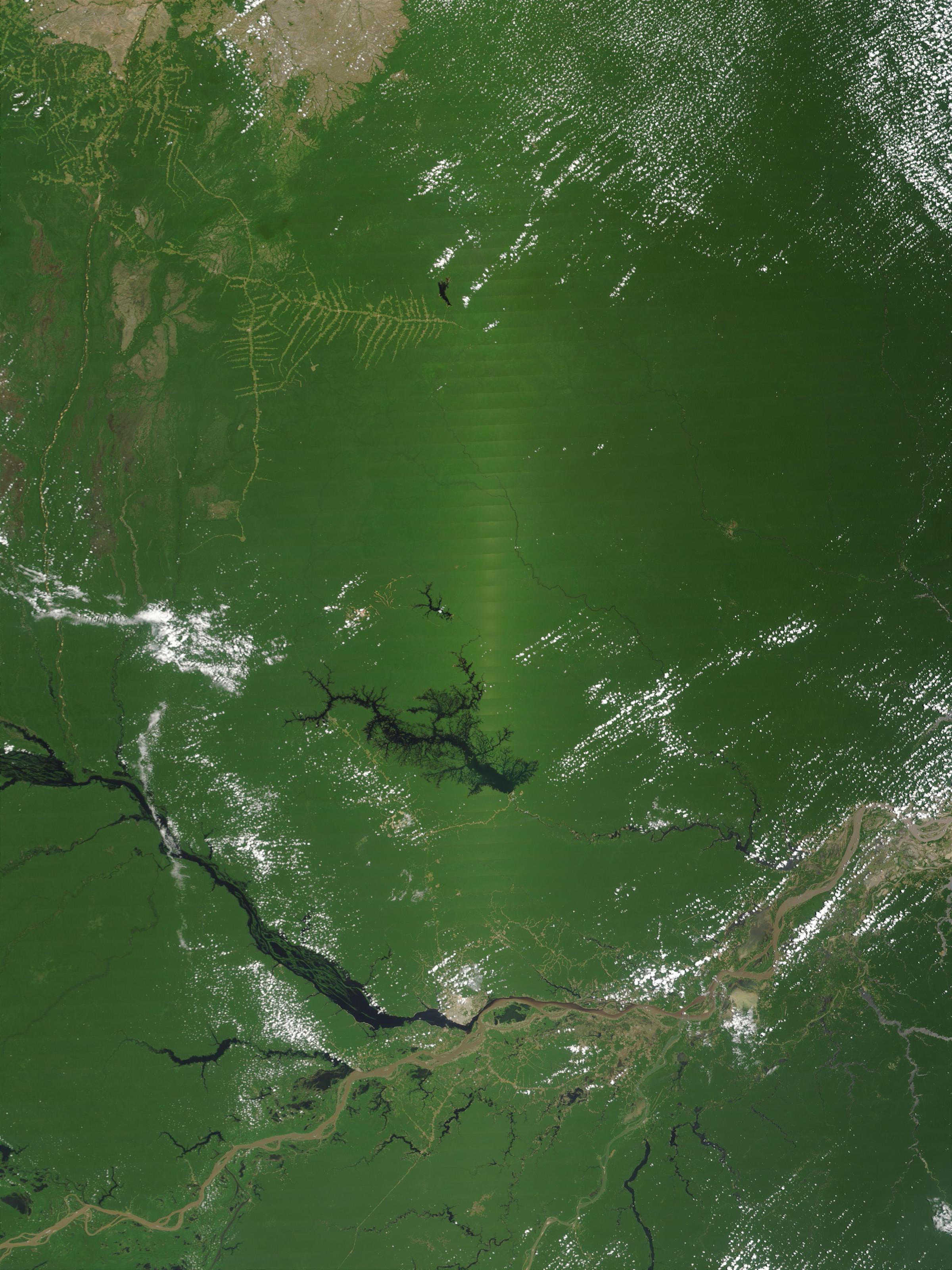 Punto caliente de vegetación en el norte de Brasil