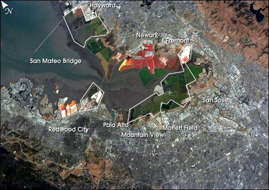Salt Ponds, South San Francisco Bay