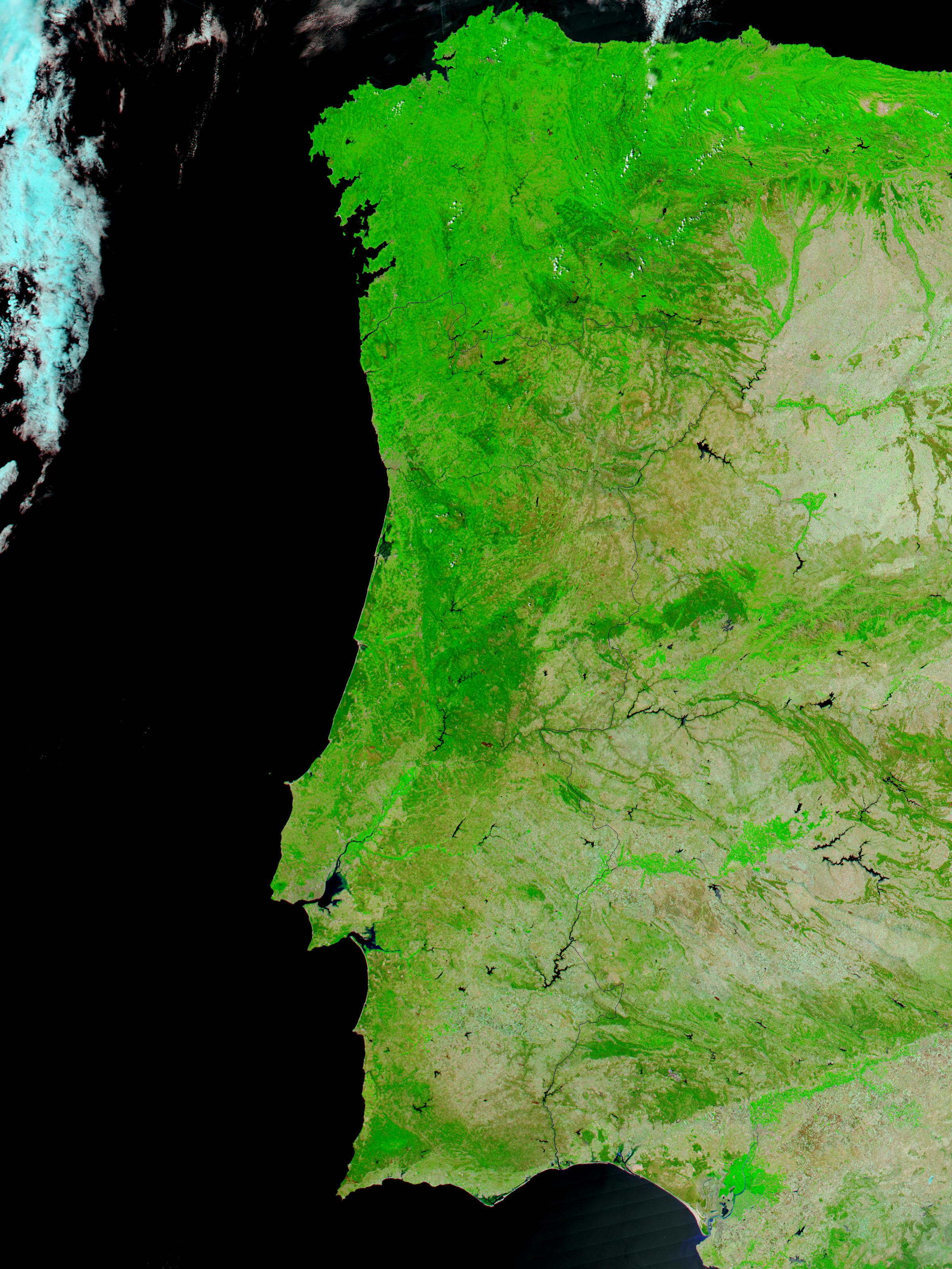 Satellite Image, Photo of Forest Fires in Portugal