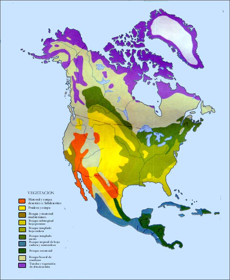 Vegetation of North America