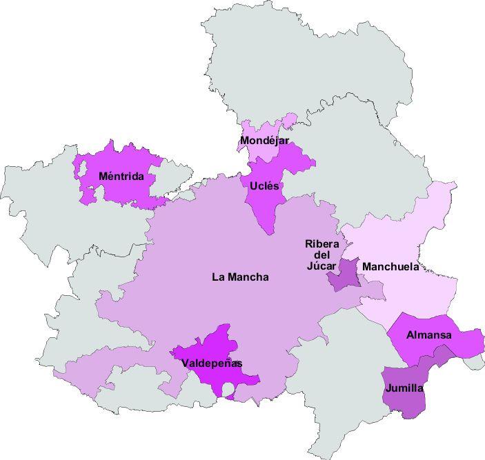 Castile-La Mancha wines 2008