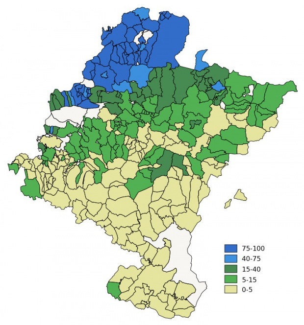 Euskera en Navarra 2001