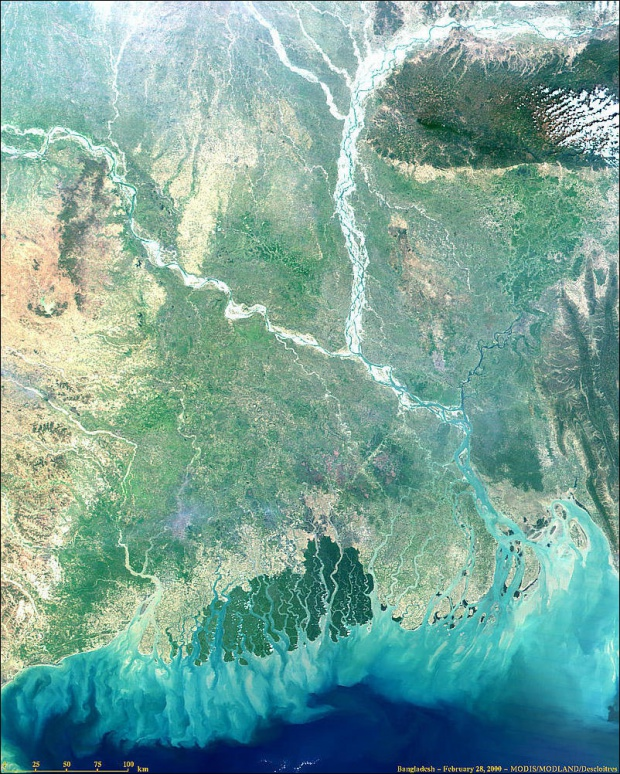 Bangladesh from MODIS