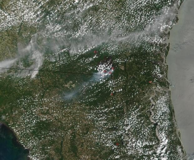 Fuego del complejo Blackjack Bay en Refugio de Vida Silvestre Okefenokee