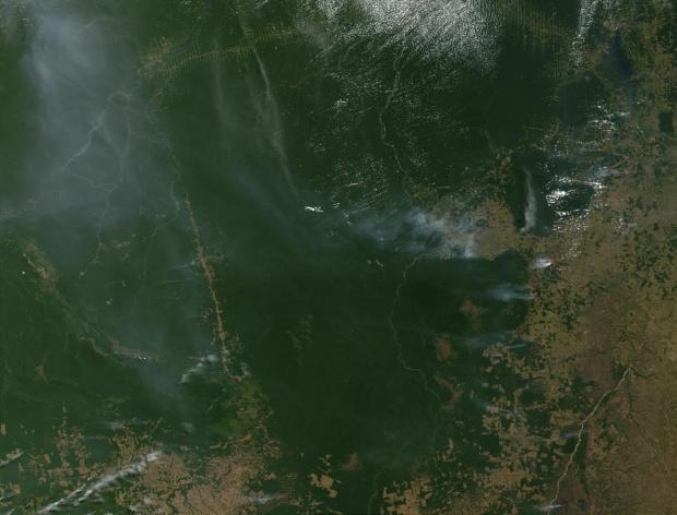 Imagen, Foto Satelite de Deforestación en Estado de Pará, Brasil