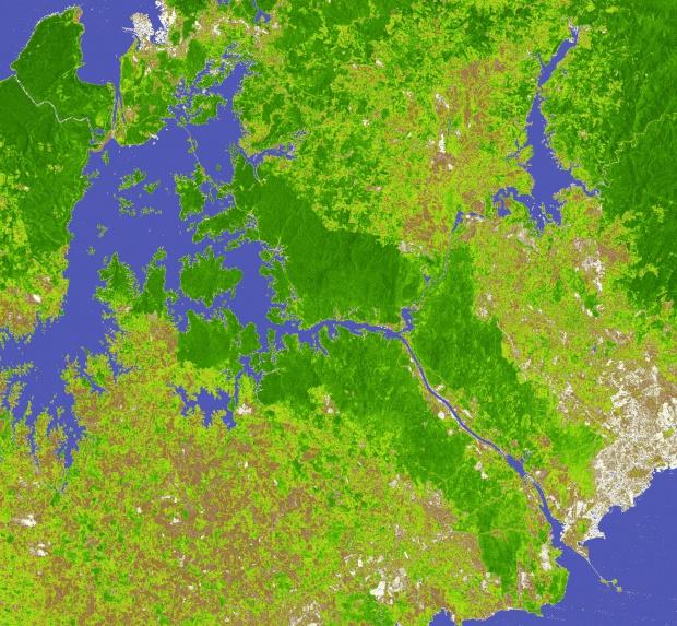 Imagen, Foto Satelite del Bosque Lluvioso, Panamá