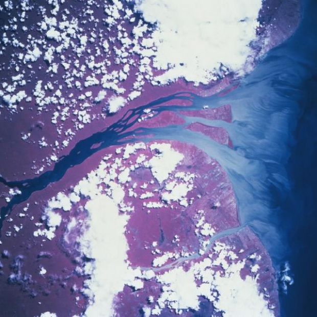 Satellite Image, Photo of Essequibo River, Guyana