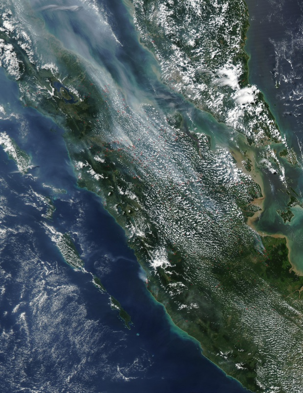 Incendios en Sumatra