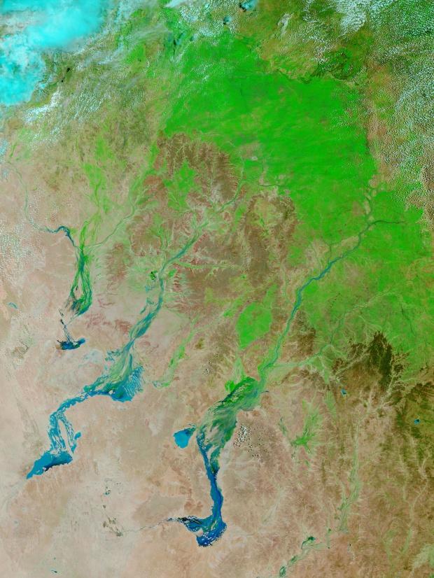 Inundaciones y verdecimiento en Queensland, Australia (falso color)