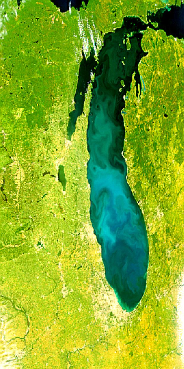 Lago Míchigan en proliferación