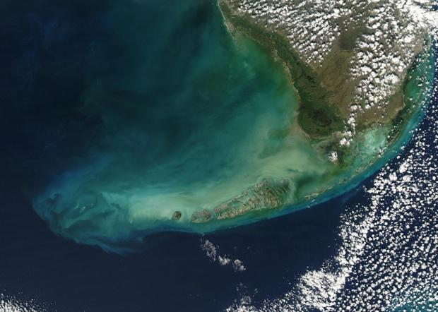 Los Cayos de la Florida